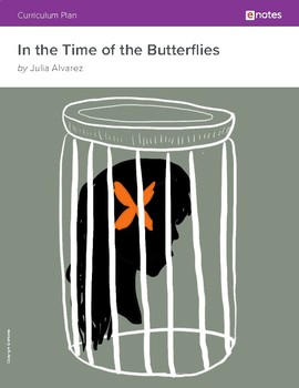 In the Time of the Butterflies eNotes Essential Lessons
