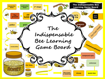Indispensable Bee Learning Game Board