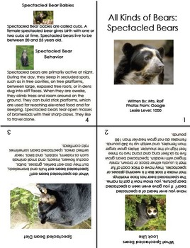 Informational Text: All About Bears Book Collection