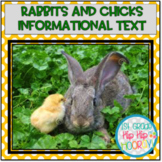 Research with Bunnies and Chicks...Informational Text, Act