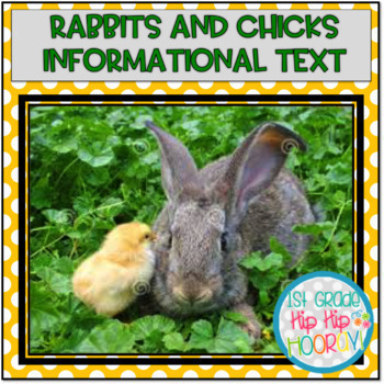 Springtime with Bunnies and Chicks...Informational Text, A