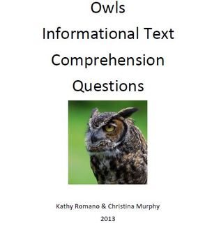 Informational Text and Questions for Owls