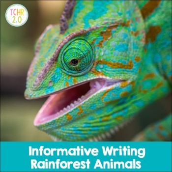 Rain Forest Informative Writing Research Habitat