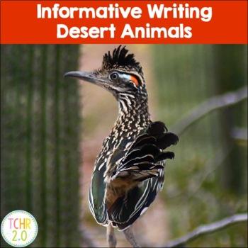 Desert Habitat Informative Writing Research Jackrabbit Arm