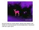 Infrared Light Game