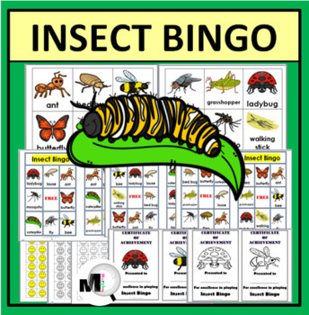 Insects Bingo Game (Animal Classification) Insect Activity