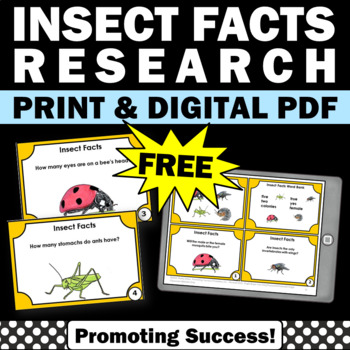 free insects facts task cards games for kids