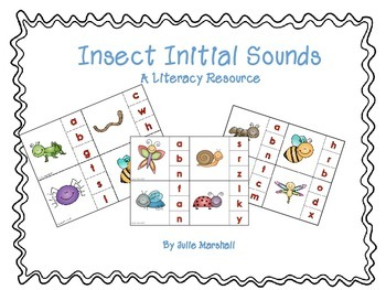 Insect Initial Sound Cards