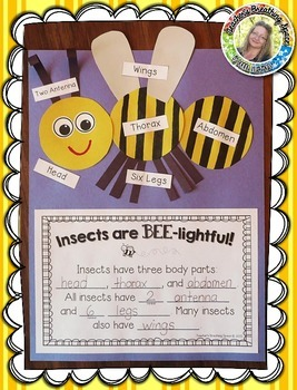Insect Labeling and Writing --- Insect Craftivity --- Inse