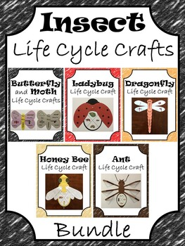Insect Life Cycle Crafts ~ Butterfly, Moth, Ladybug, Drago