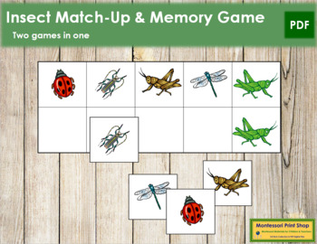Insect Match-Up and Memory