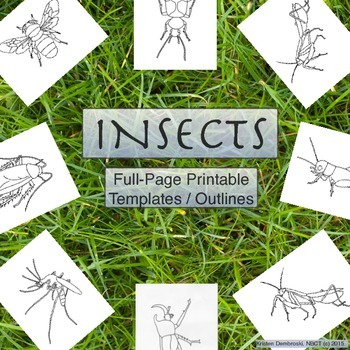 Insect Printables Full-Page Templates / Coloring Pages for