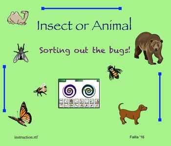 Insect or Animal - Sorting out the bugs!