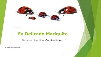 Insect world- The Dainty Ladybug in Spanish