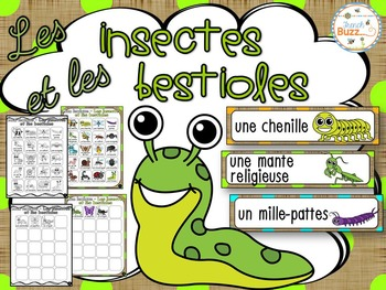 Insectes et bestioles - mur de mots et lexique (23 mots) -
