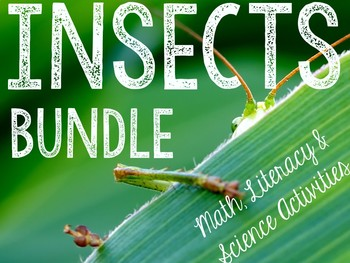 Insects: Math & Literacy Activities Bundle