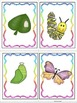 ESL Insects, Bugs and Garden Friends Vocabulary/Conversati