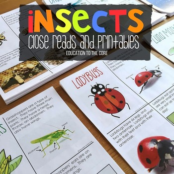 Insect Unit, Insects Activities