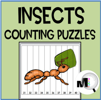 Number Puzzles - Insects Math