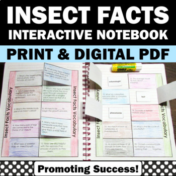 Insects Facts Interactive Science Notebook Activity