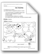Insects/Los insectos and Butterflies/La mariposa