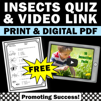 free insects facts printable for kids