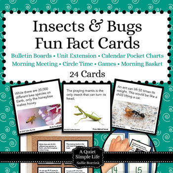 Insects and Bugs Unit Activity - Fun Fact Cards for Games,