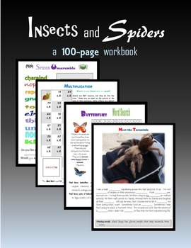 Insects and Spiders:  120 pages of activities