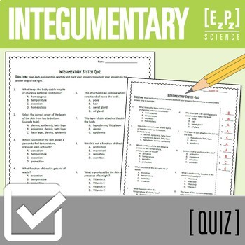 Integumentary System (Skin) Quiz
