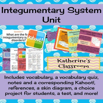 Integumentary System (Skin) Unit! Includes Vocab, Notes, P