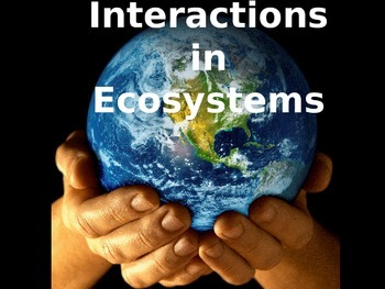 Interactions in Ecosystems PowerPoint (5th Grade Scott For