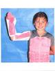 Interactive Muscles: Wear It - Label It - Display It