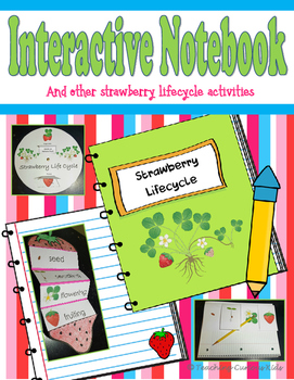 Interactive Notebook Strawberry Life Cycle