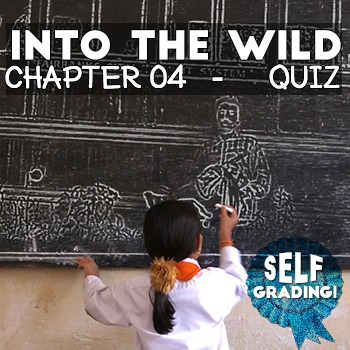 Into the Wild - Chapter 04 Quiz: Detrital Wash - Moodle, S