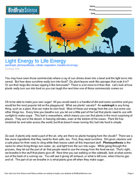 Intro to Ecology, Light Energy to Life Energy - Engaging S