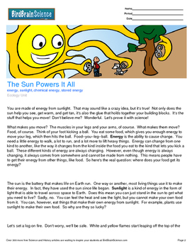 Intro to Ecology, The Sun Powers it All - Engaging Science