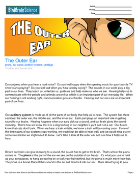 Intro to the Ear, The Outer Ear - Engaging Science Reading