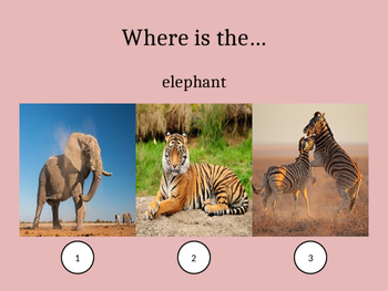 Introducing Animals for Young Students (ESL)