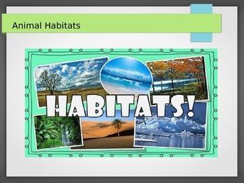 Introduction to Animal Habitats