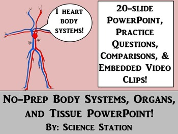Body Systems, Organs, and Tissue