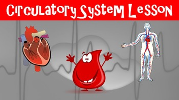 Circulatory System No Prep Lesson with Power Point, Worksh