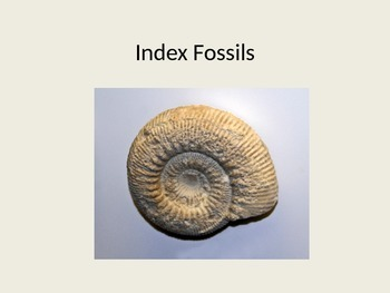 Introduction to Index Fossils Powerpoint
