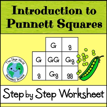 Introduction to Punnett Squares