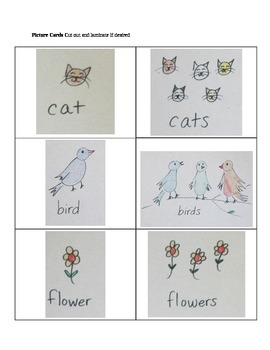 Introduction to Singular and Plural Nouns