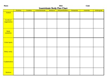 Invertebrate Body Plan Chart Activity