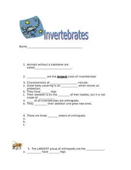 Invertebrate Classification Note Page
