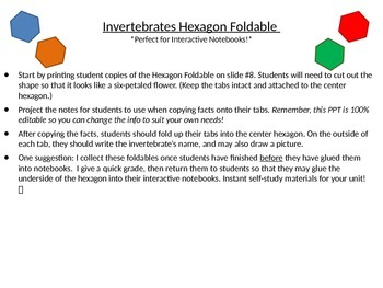 Invertebrates Hexagon Foldable - Perfect for Interactive N