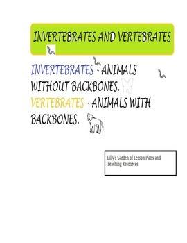 Invertebrates Word Search and Vertebrates Word Search