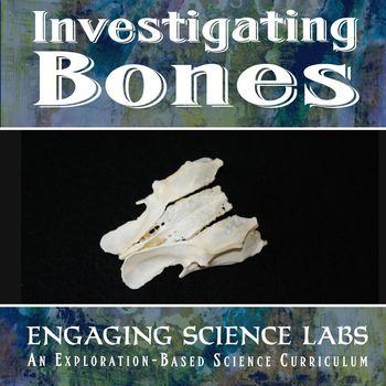 Investigating Bones—3 science activities for Middle School