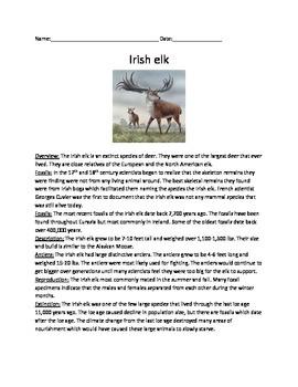 Irish Elk - Extinct - Review Article Questions Vocabulary
